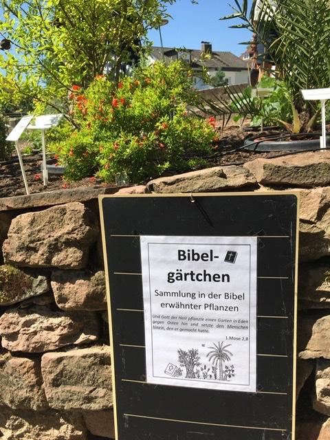 """Im Bildvordergrund ein Schild """"Bibelgärtchen"""" an einer Natursteinmauer. Im Hintergrund viele Pflanzen im Sonnenschein."""
